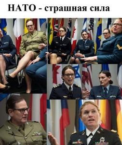 , Сила НАТО или НиТо